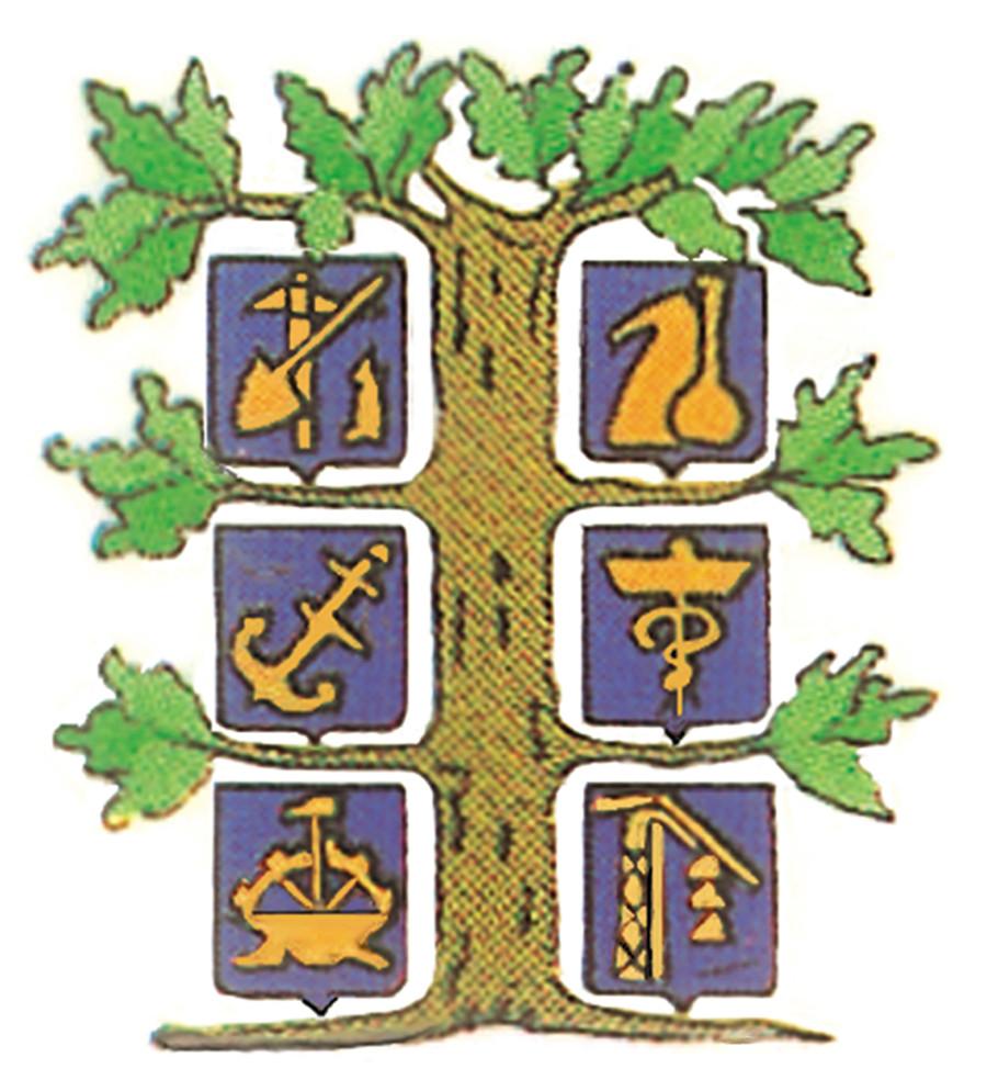 Logo anla